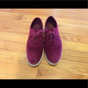 Beautiful suede Cole Haan oxfords size 6.5
